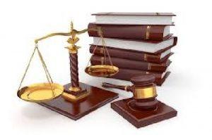 دانلود گزارش کارآموزی دادگستری – اثبات مالکیت لایحه